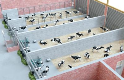 DairyFeed J GEA krmljenje